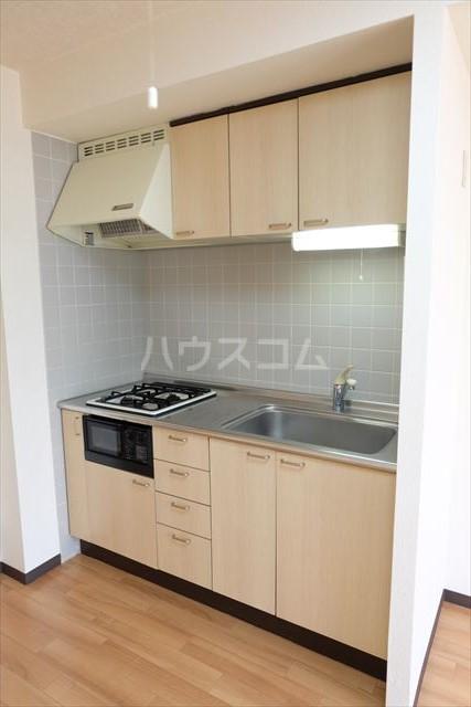 桜フラッツ 202号室のキッチン