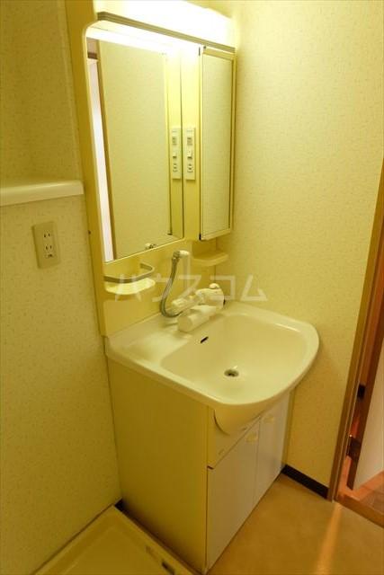 桜フラッツ 202号室の洗面所