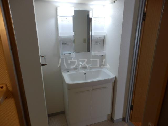 シティルミエール西浦和 205号室の洗面所