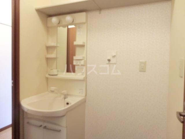 エアルースⅡ 205号室の洗面所