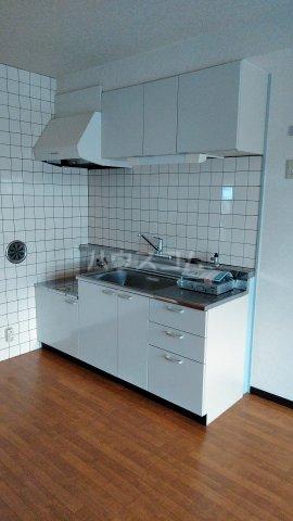 アーバンライフ若海 207号室のキッチン