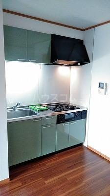 コンフォート ハナブサ 202号室のキッチン