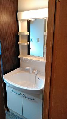 コンフォート ハナブサ 202号室の洗面所