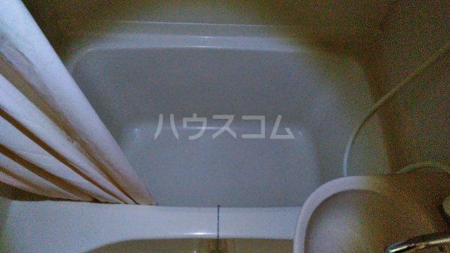 ハウスエバーグリーン 203号室の風呂