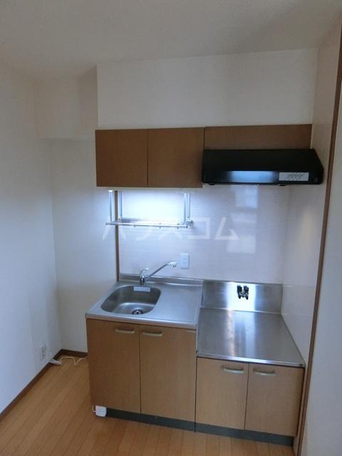 メモリアル空港東 309号室のキッチン