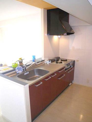 スルス門松Ⅱ 102号室のキッチン