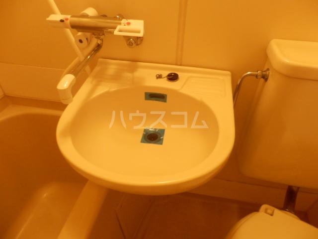 メゾン・ド・シュミネ 206号室の洗面所