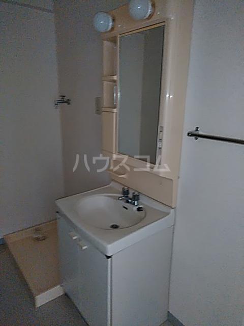 シャテニエヒルズ 203号室の洗面所
