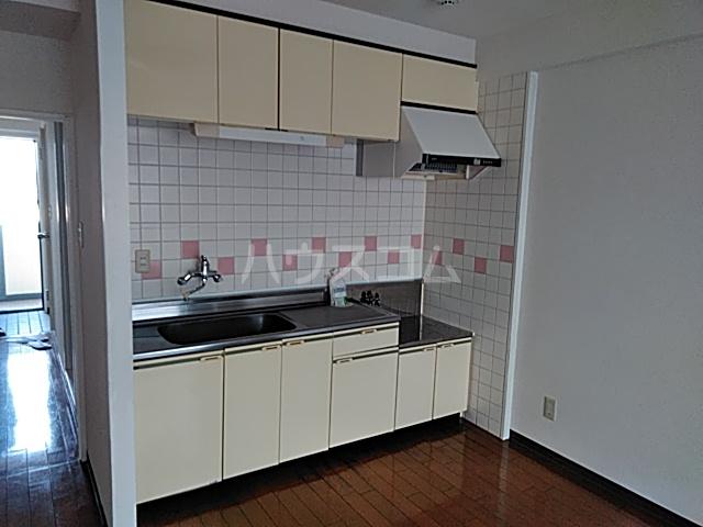 シャテニエヒルズ 203号室のキッチン