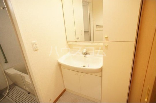 サンアベニュー田園調布 102号室の洗面所