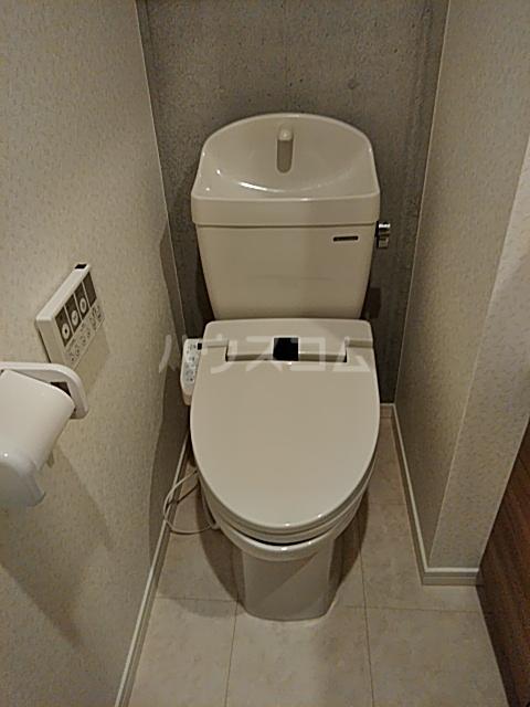 ウェルスクエアイズム奥沢 101号室のトイレ