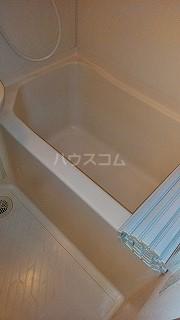 カーサエステレーヤ 305号室の風呂