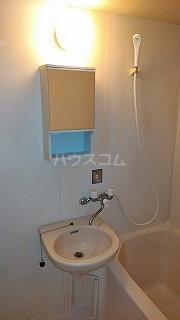 カーサエステレーヤ 305号室の洗面所
