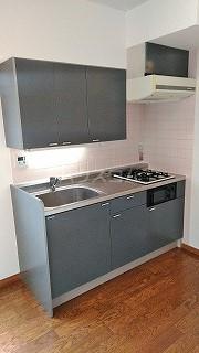 カーサエステレーヤ 305号室のキッチン