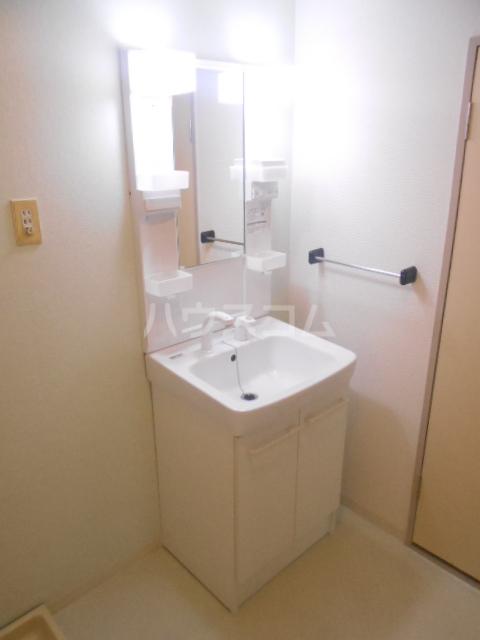 パストラル野沢壱番館 203号室の洗面所
