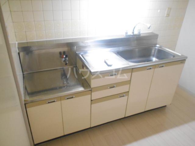 パストラル野沢壱番館 203号室のキッチン