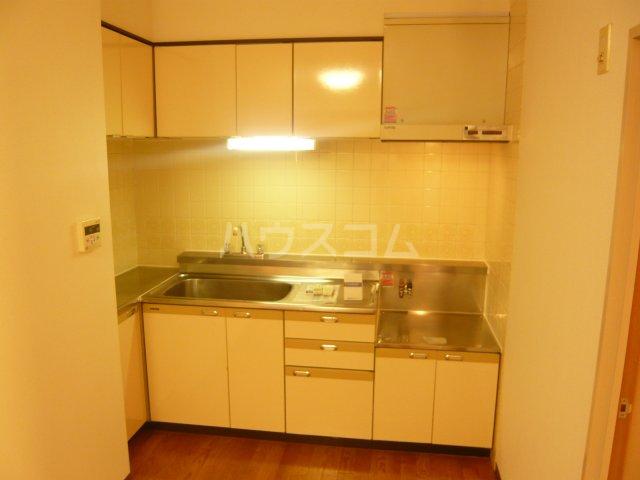 パストラル野沢壱番館 205号室のキッチン