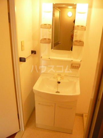 パストラル野沢壱番館 205号室の洗面所