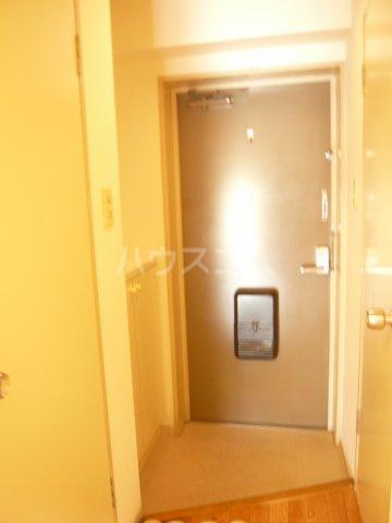パストラル野沢壱番館 205号室の玄関