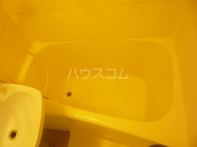 シャトレ・エルム 202号室の風呂