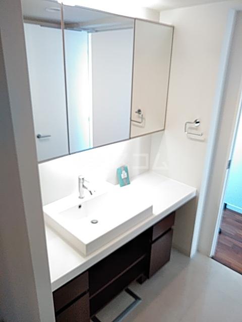 アパートメンツ駒沢大学 401号室の洗面所