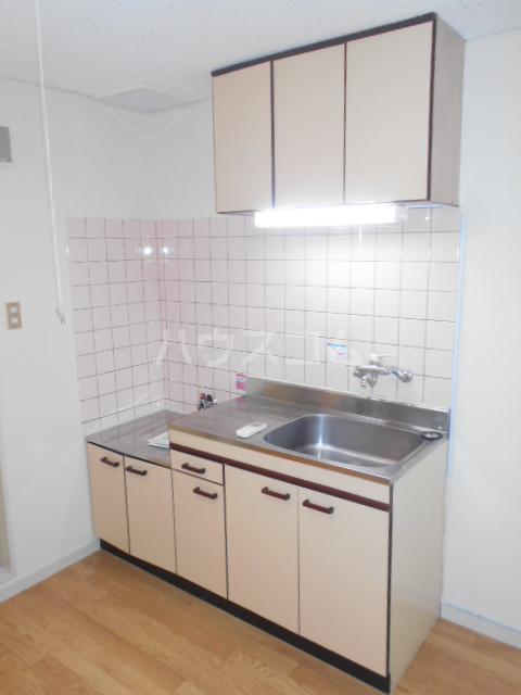 アートピア駒沢 204号室のキッチン