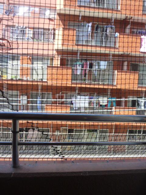 コンド六番館 305号室の景色
