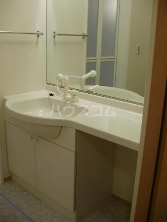 ベルウッドⅡ田園調布 201号室の洗面所
