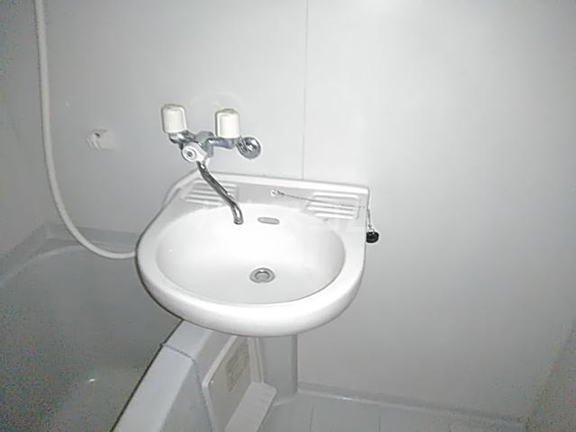 フェリシモK 1-A号室の洗面所