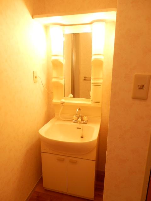 ディアハウス 102号室の洗面所