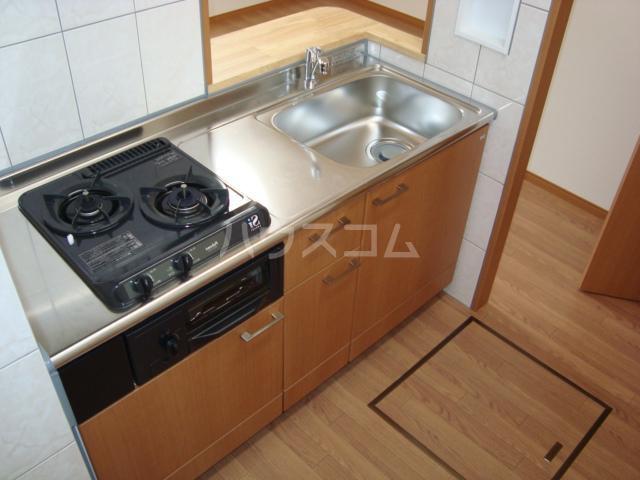モーツァルト 105号室のキッチン