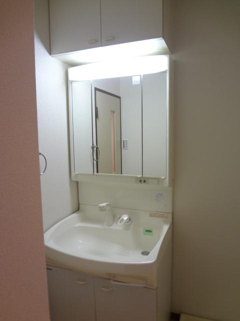 エビデンス上尾 310号室の洗面所