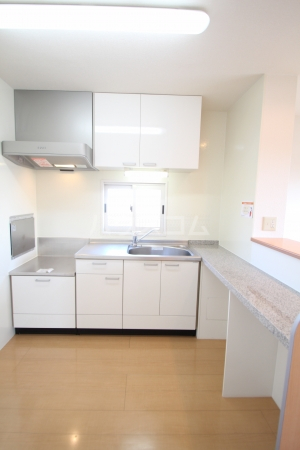 サンライズヒル C 201号室のキッチン