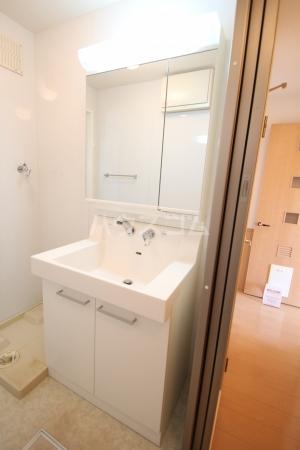サンライズヒル C 201号室の洗面所
