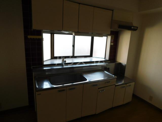 NK上尾ビル 301号室のキッチン