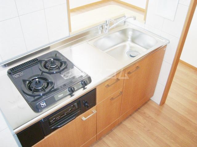 セシオンリオグランデ 107号室のキッチン