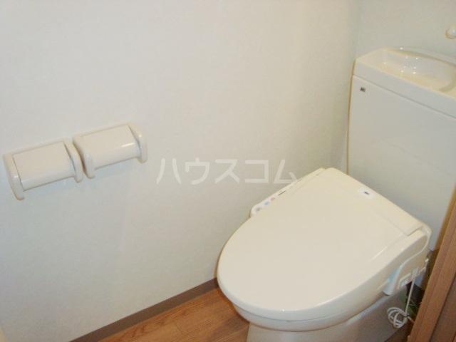 セシオンリオグランデ 107号室のトイレ