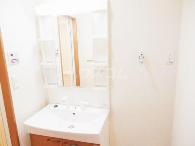 セシオンリオグランデ 107号室の洗面所