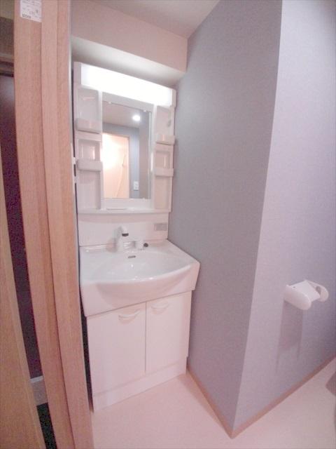 プロヴァンス北上尾 406号室の洗面所