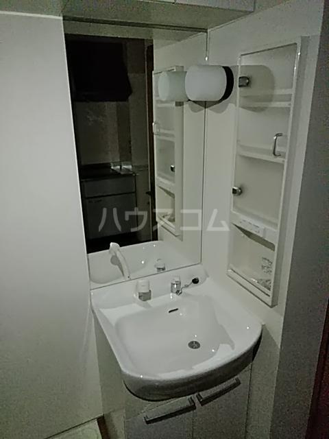 メゾン ルオーイェ 105号室の洗面所
