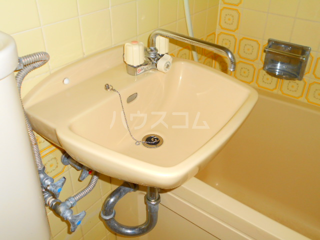 スカイコート三鷹 107号室の洗面所