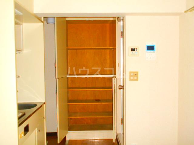 スカイコート三鷹 107号室の収納