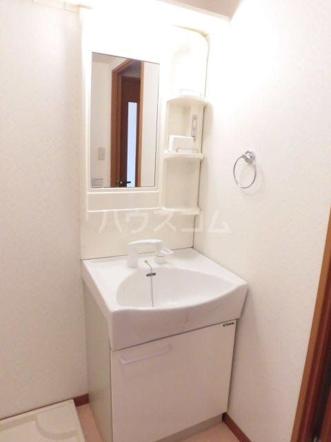 アリーナ 206号室の洗面所