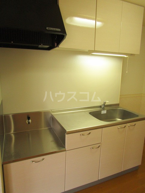 フランシーズ 301号室のキッチン