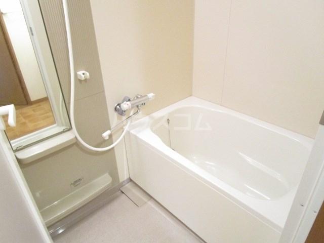 フランシーズ 301号室の風呂