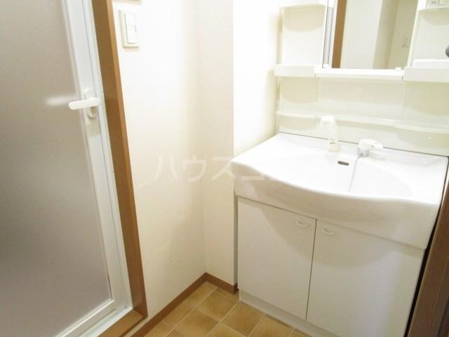 フランシーズ 301号室の洗面所