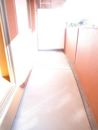 エヴァーグリーン 201号室のバルコニー