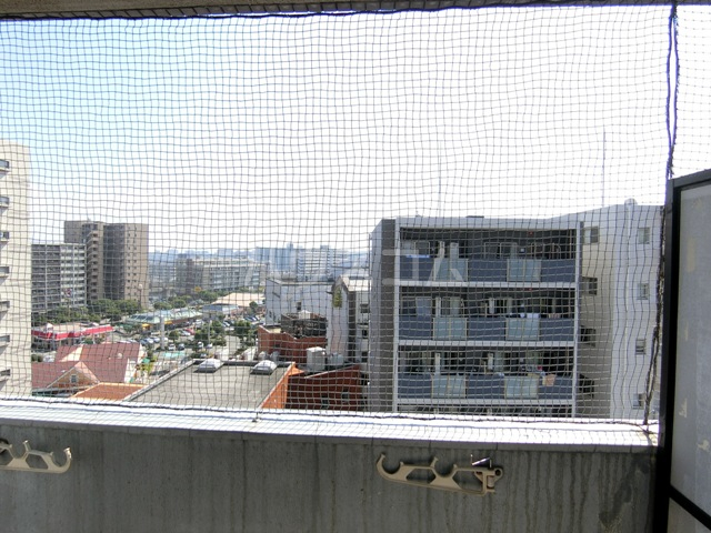 ラ・レジダンス・ド・福岡県庁前 308号室の景色