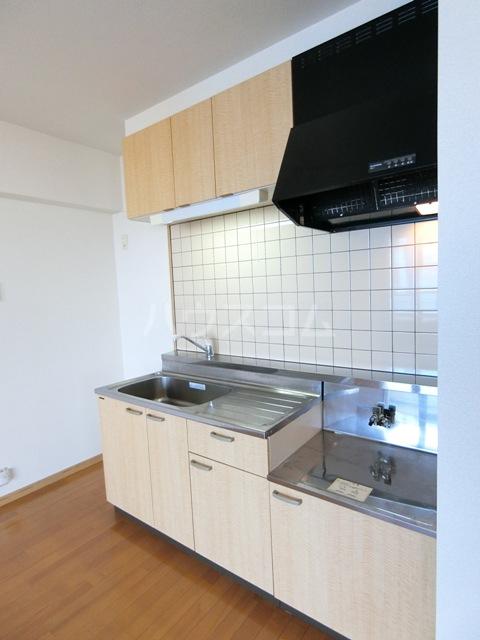 グラントープ道頓堀 204号室のキッチン