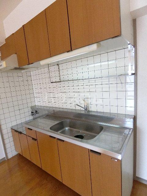 メゾン・ド・レスポアールⅡ 401号室のキッチン